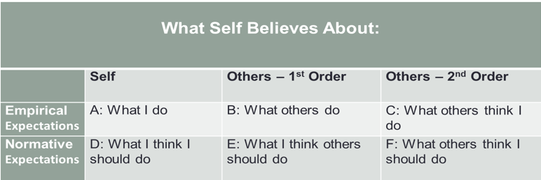 What Self Believes About