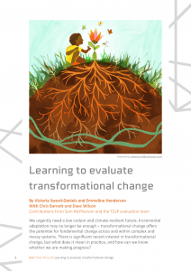 cover of transformative change think piece
