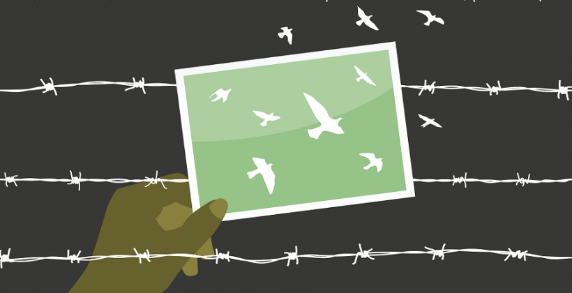 human trafficking and unsafe migration, hand holding picture of birds in front of barbed wire
